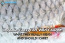 Organic, Grass-Fed, Wild-Caught: What They Really Mean and Should I Care?